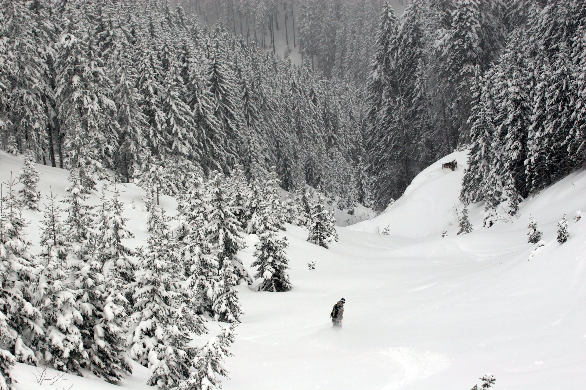 Snowboard turn #1