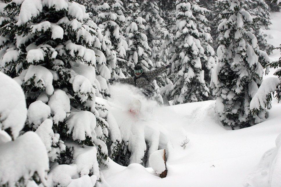 Snowboard treejib