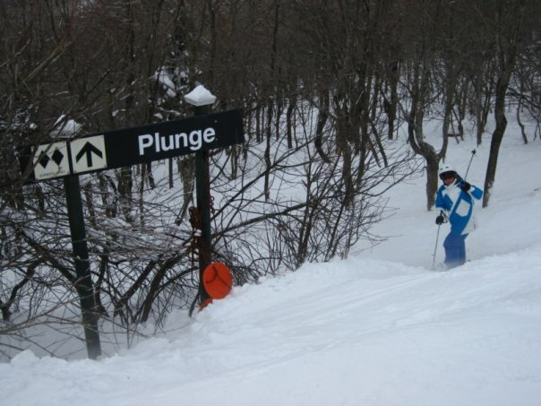The plunge!!!!!!