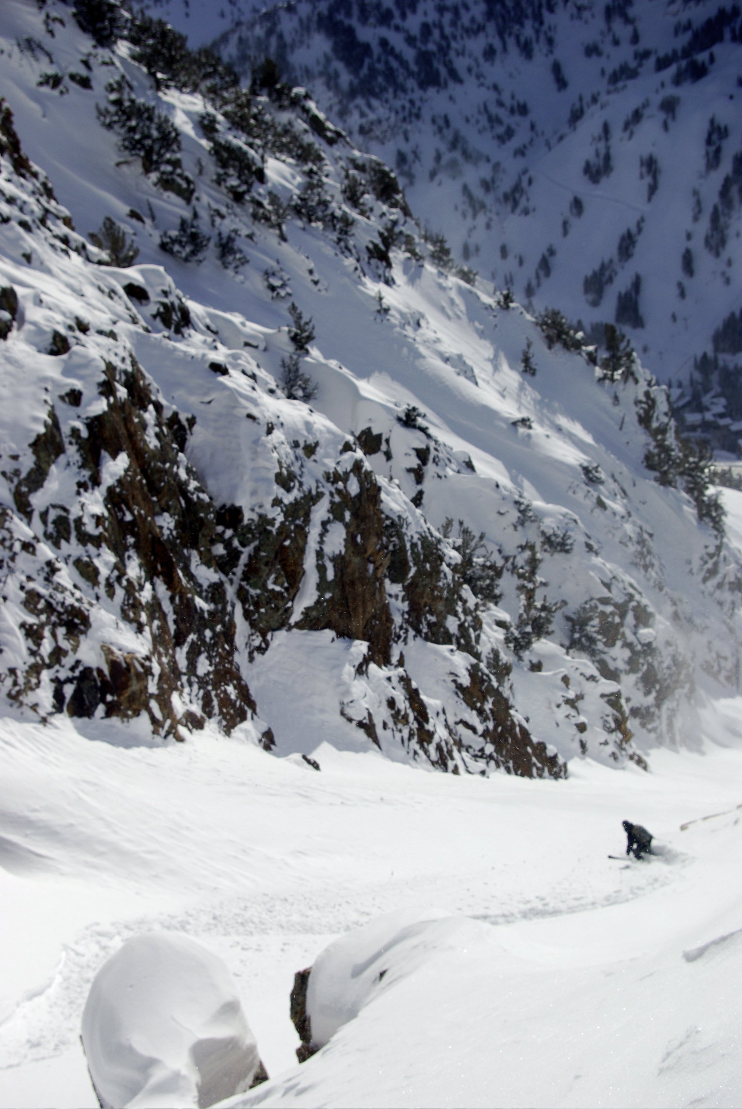 COUNTS GULLY