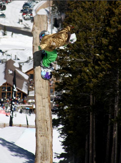 Lodge Pole