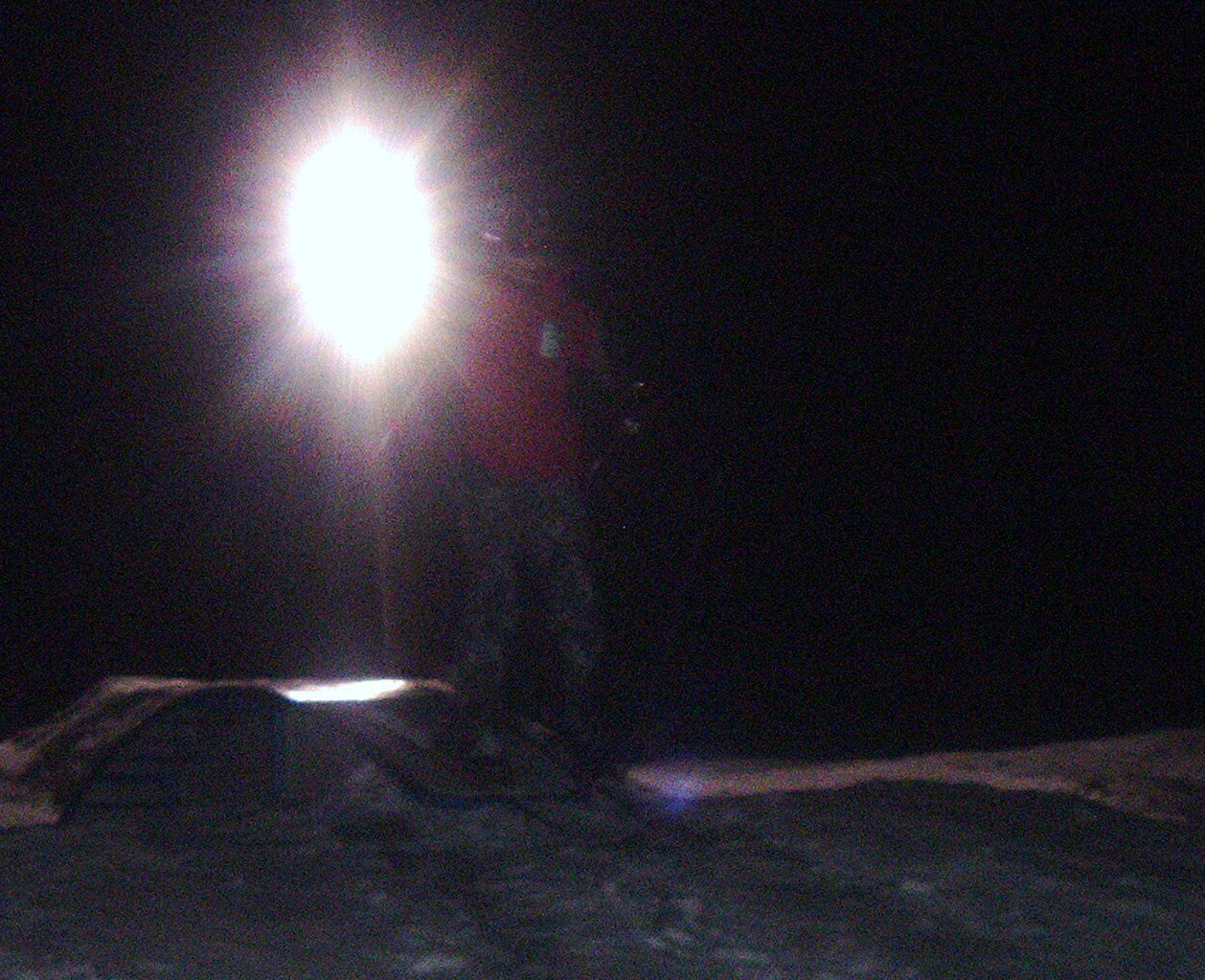 Night time at bogus