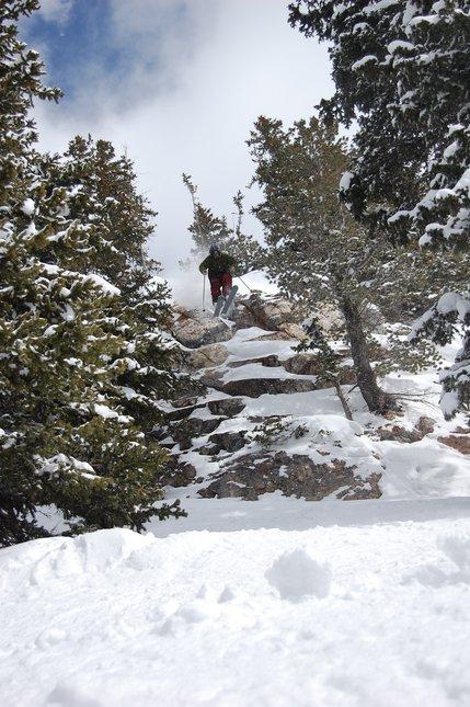 Snowbird cliff