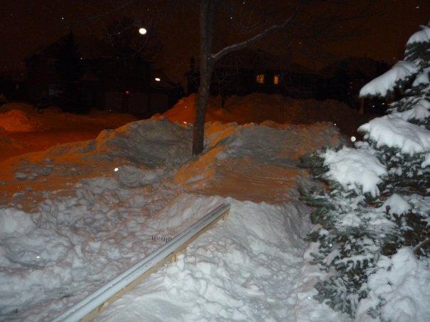 Front yard rail