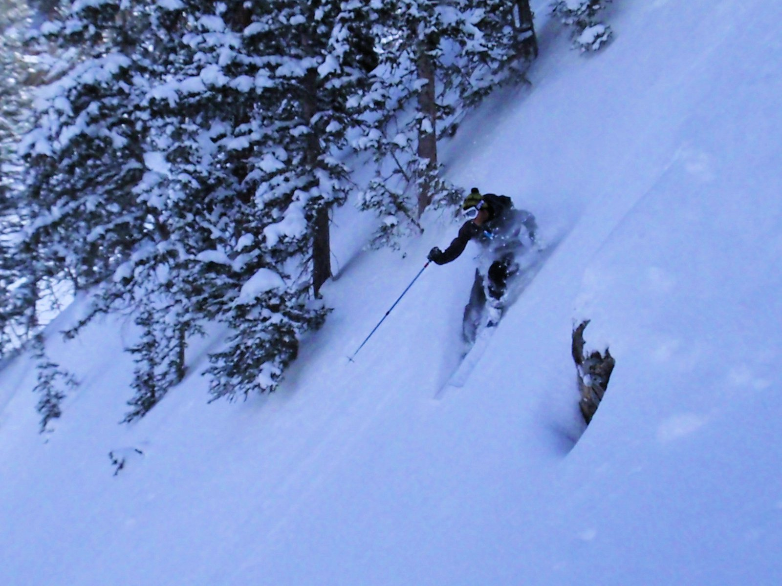 Wasatch pow 7