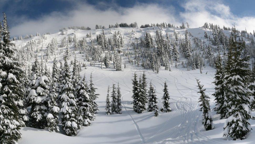 Cat Skiing Mt Bailey