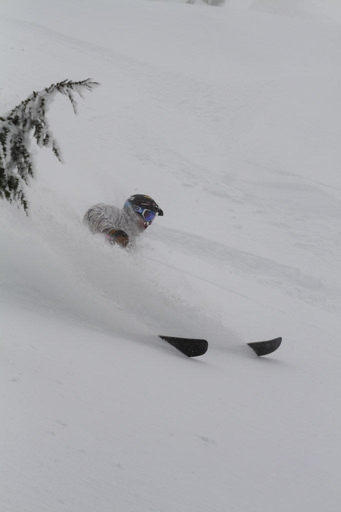 Iggy at Cat Ski Mount Bailey