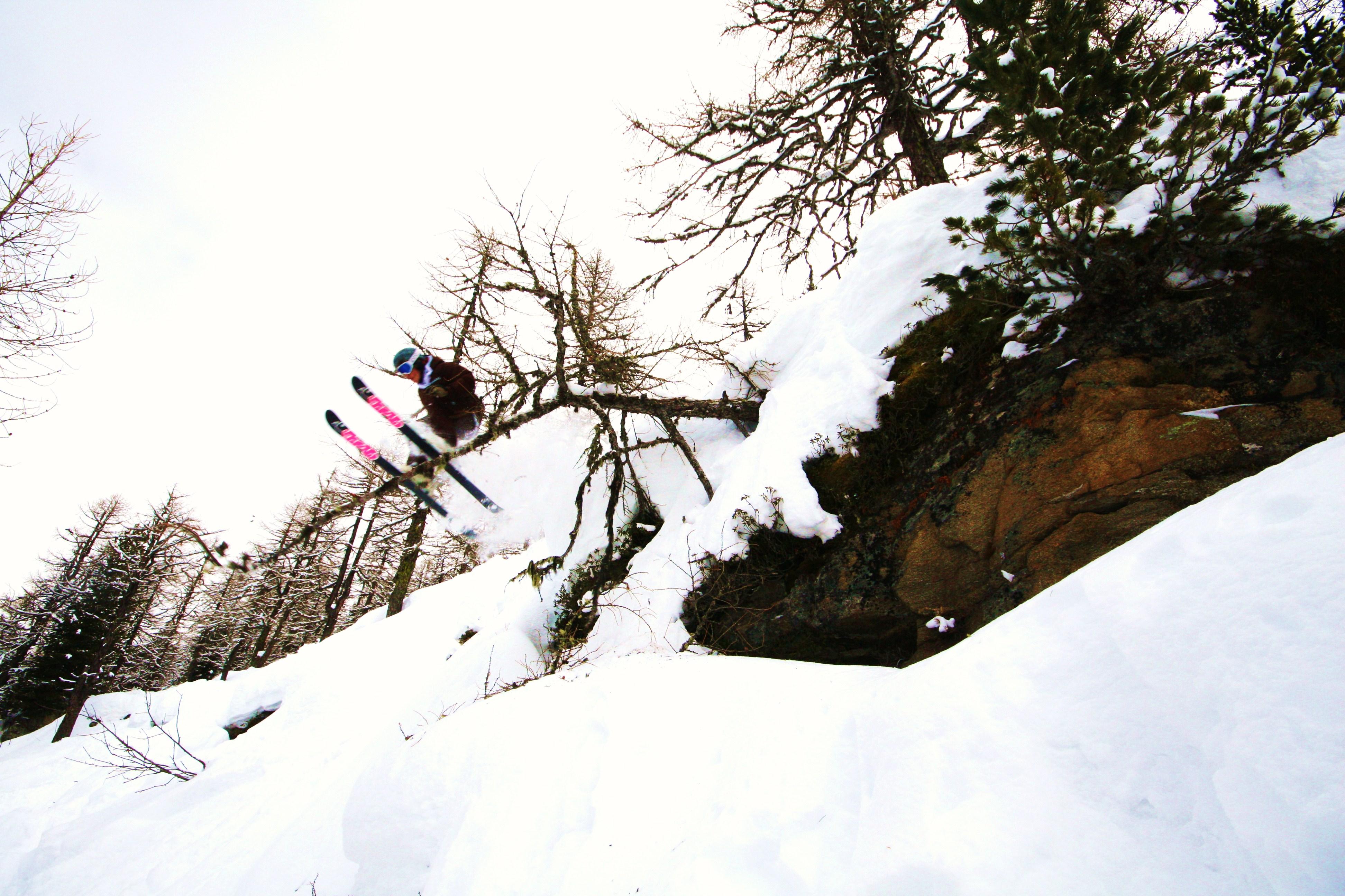 Bc tree rail
