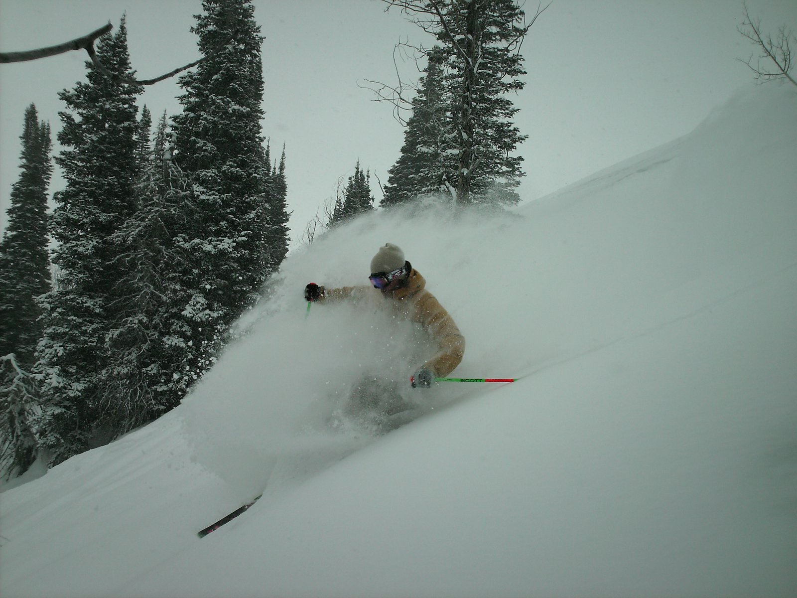 Pow at snowbasin