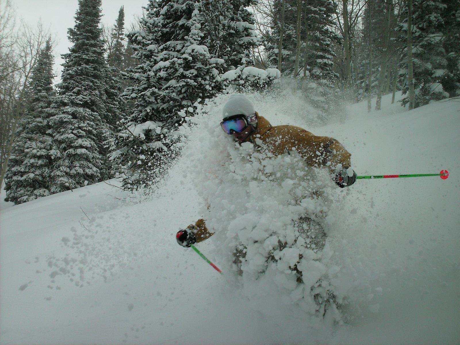 Powder yesterday at snowbasin
