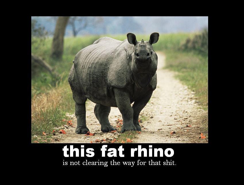 Fat rhino