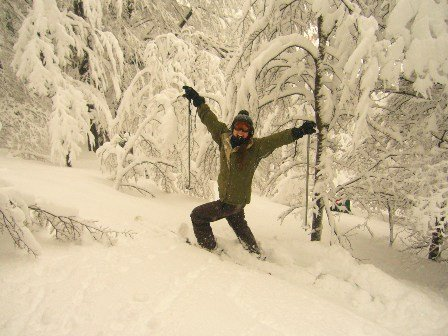 Trees and Powder!! :)