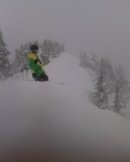 Powder on Cowboy Ridge