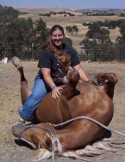 I love horses.