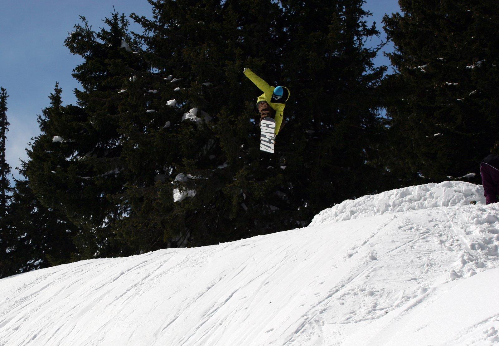 Snowboard mute