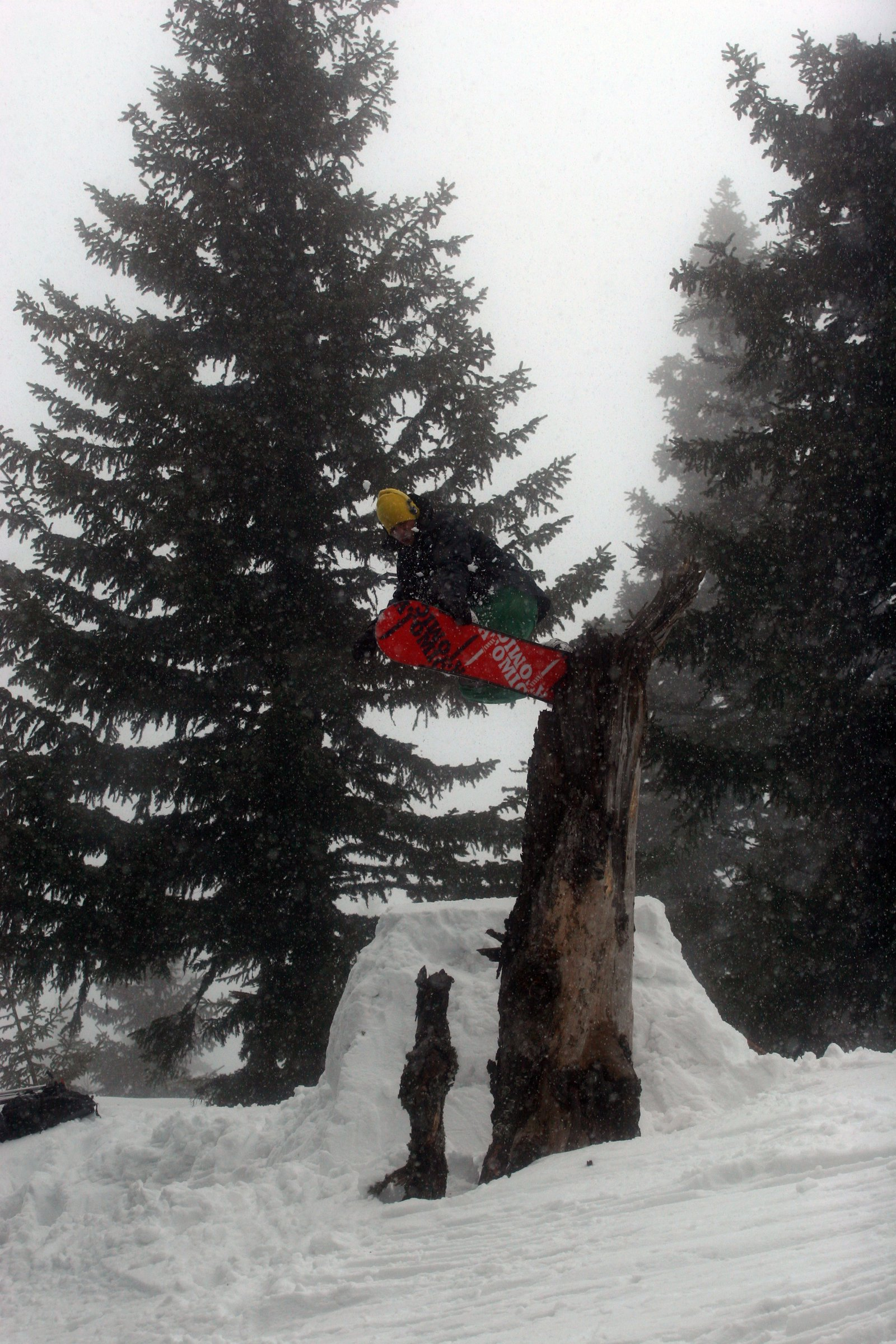Snowboard treebonk #4