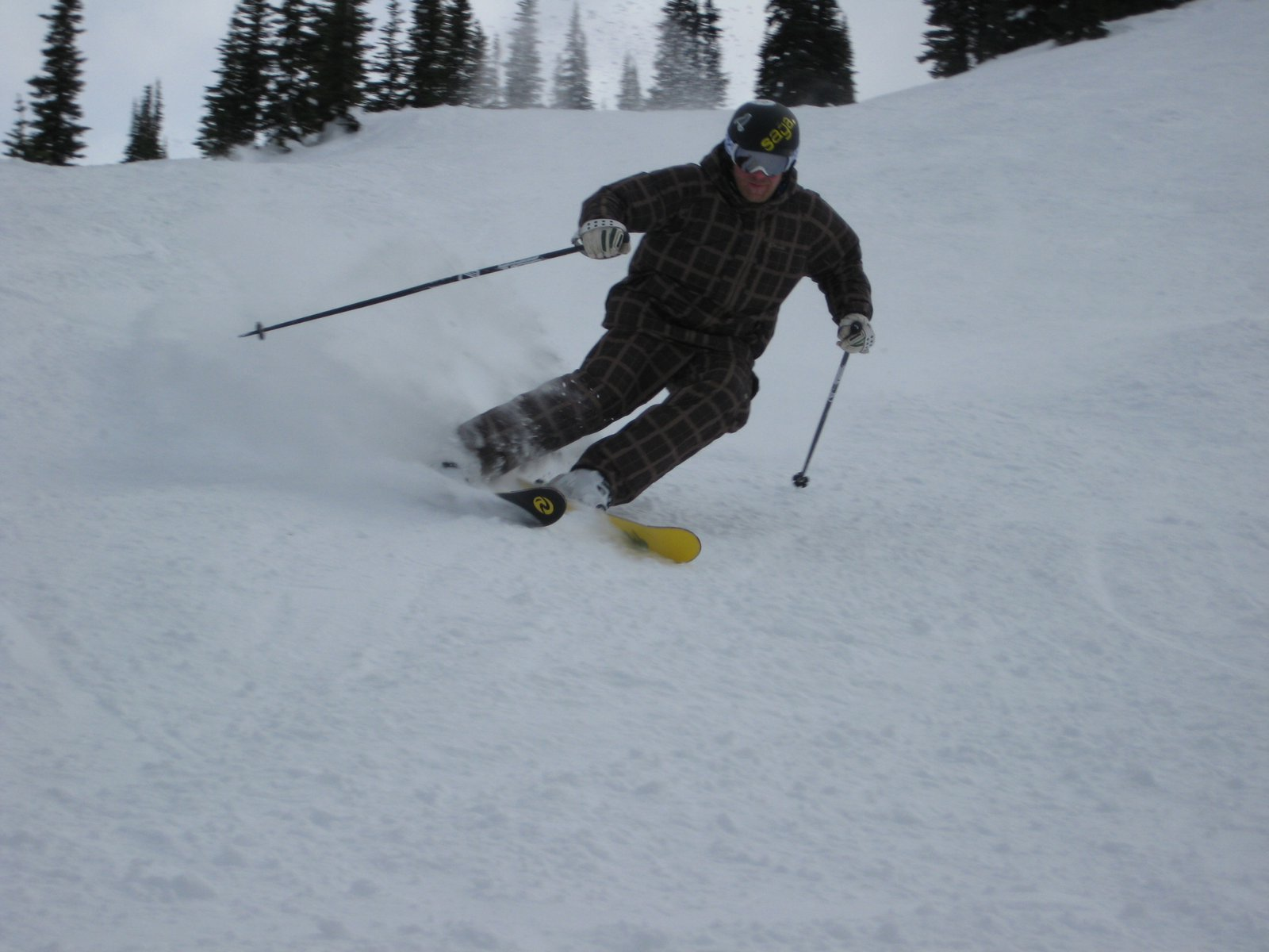 Carving Whistler Mt.