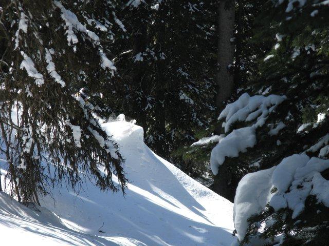 Find the skier