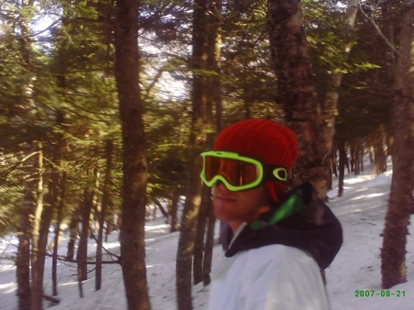 Mount snow trees