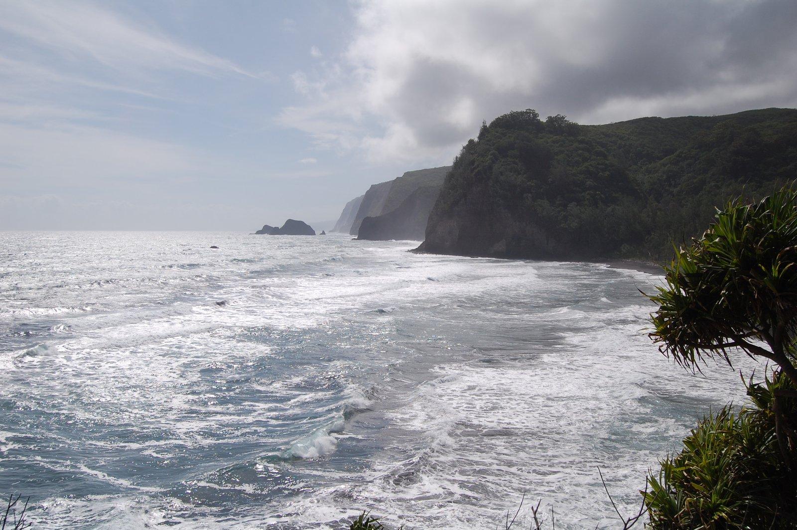 Hawaii d40 sample