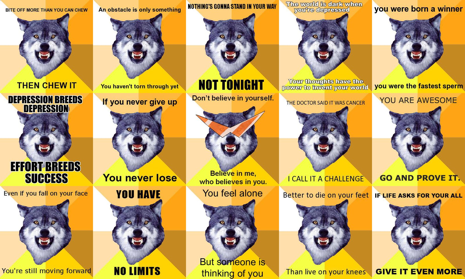 Inspiration Wolf