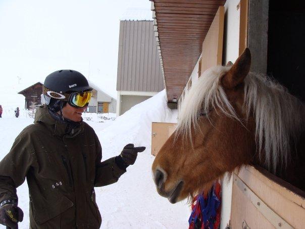 Hest?