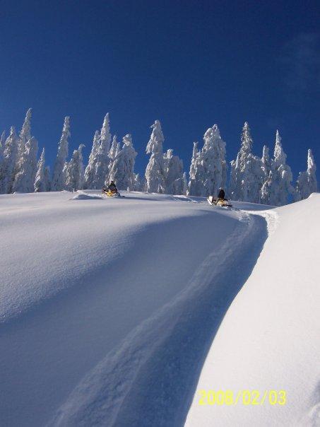 Sled skiing