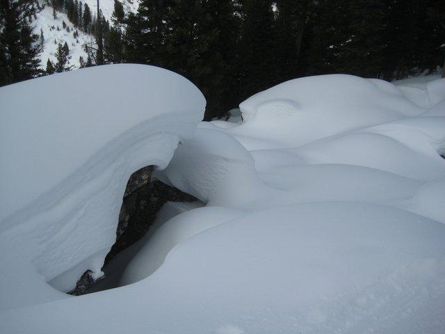 Jackson Hole pillows