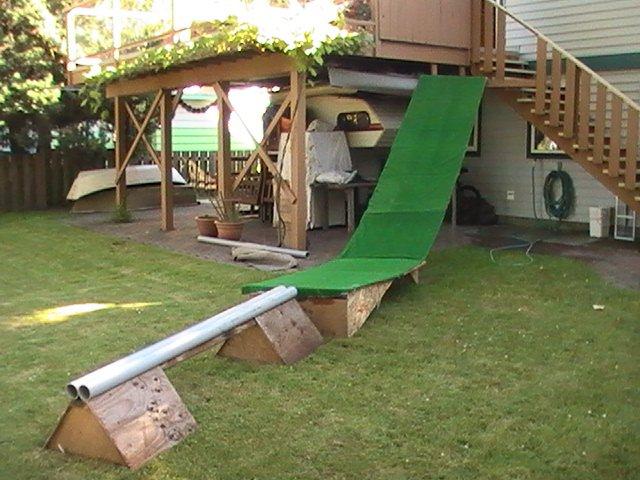 New backyard setup