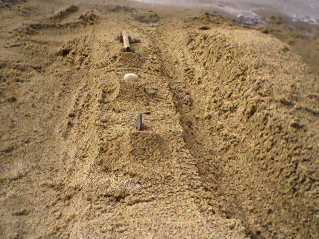 Sand Terrain Park Jib Line