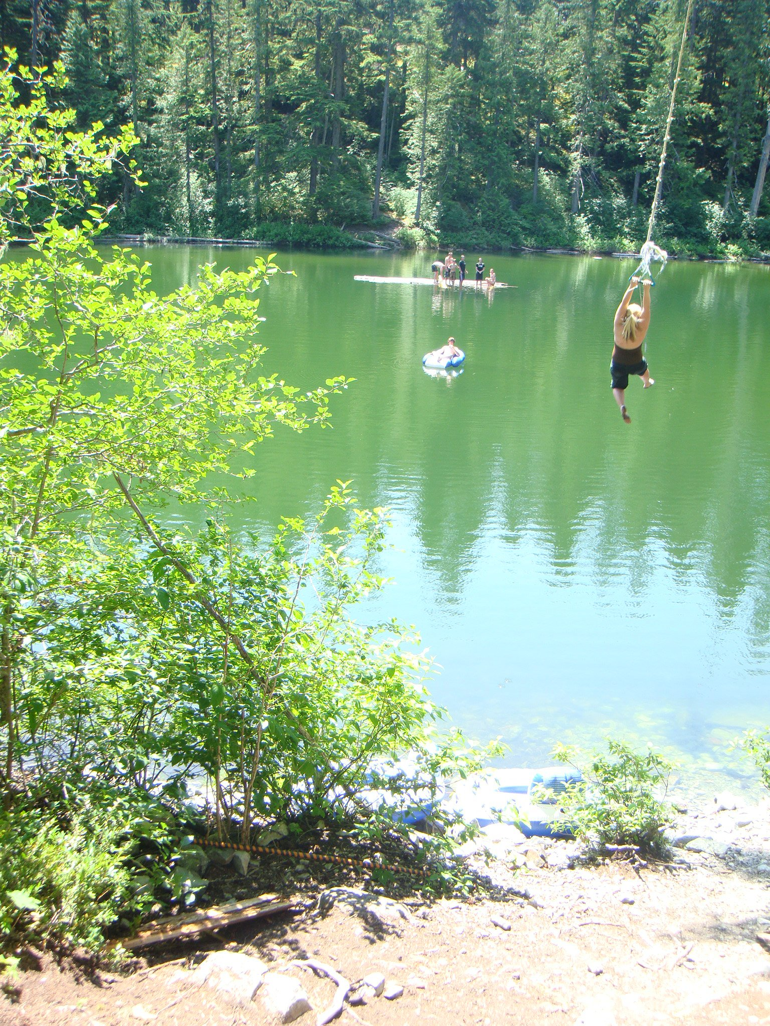 One duck rope swing