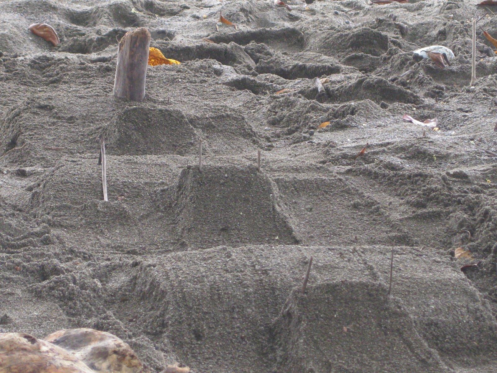 Beach Jump Line
