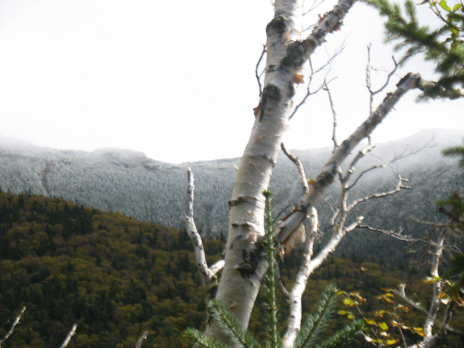 NH snow