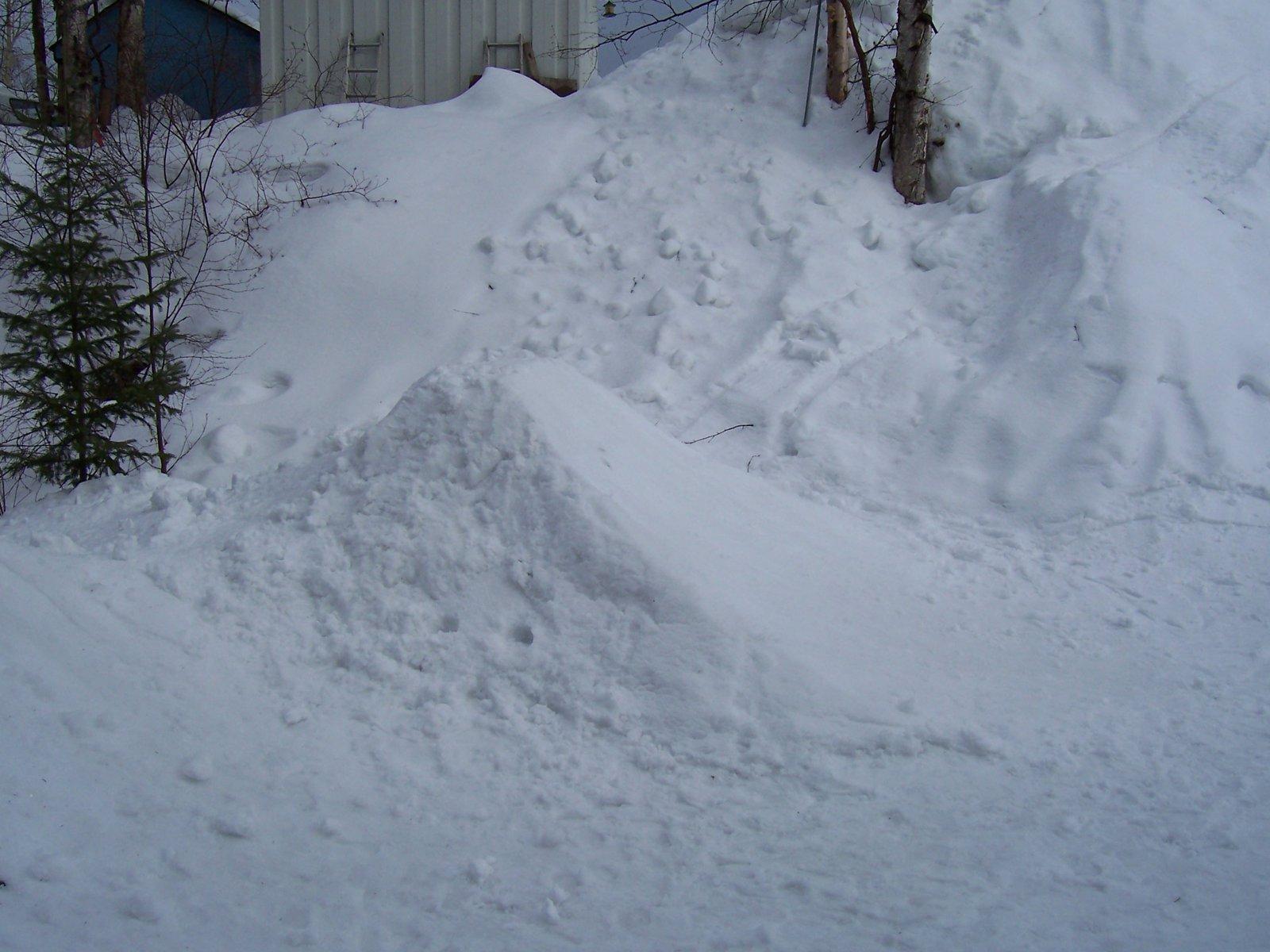 Backyard Jumps 3