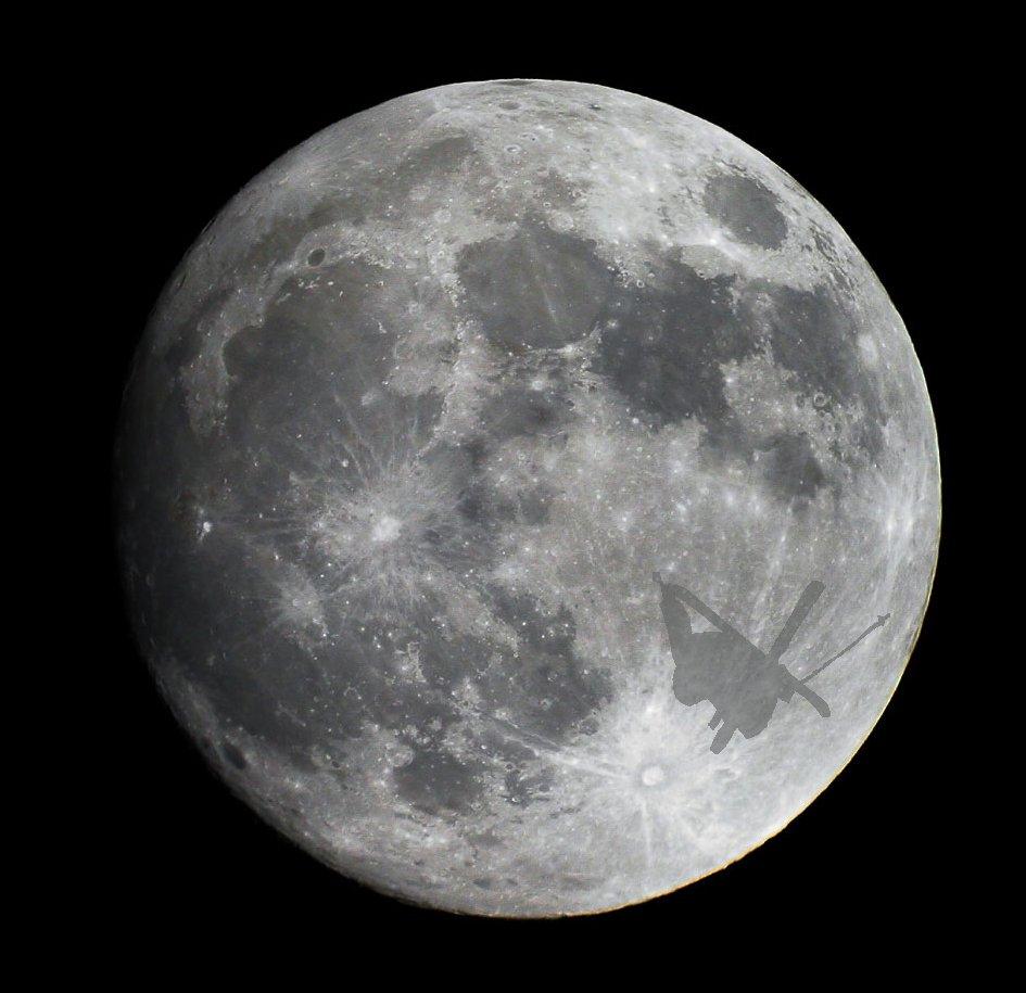 Skier On The Moon