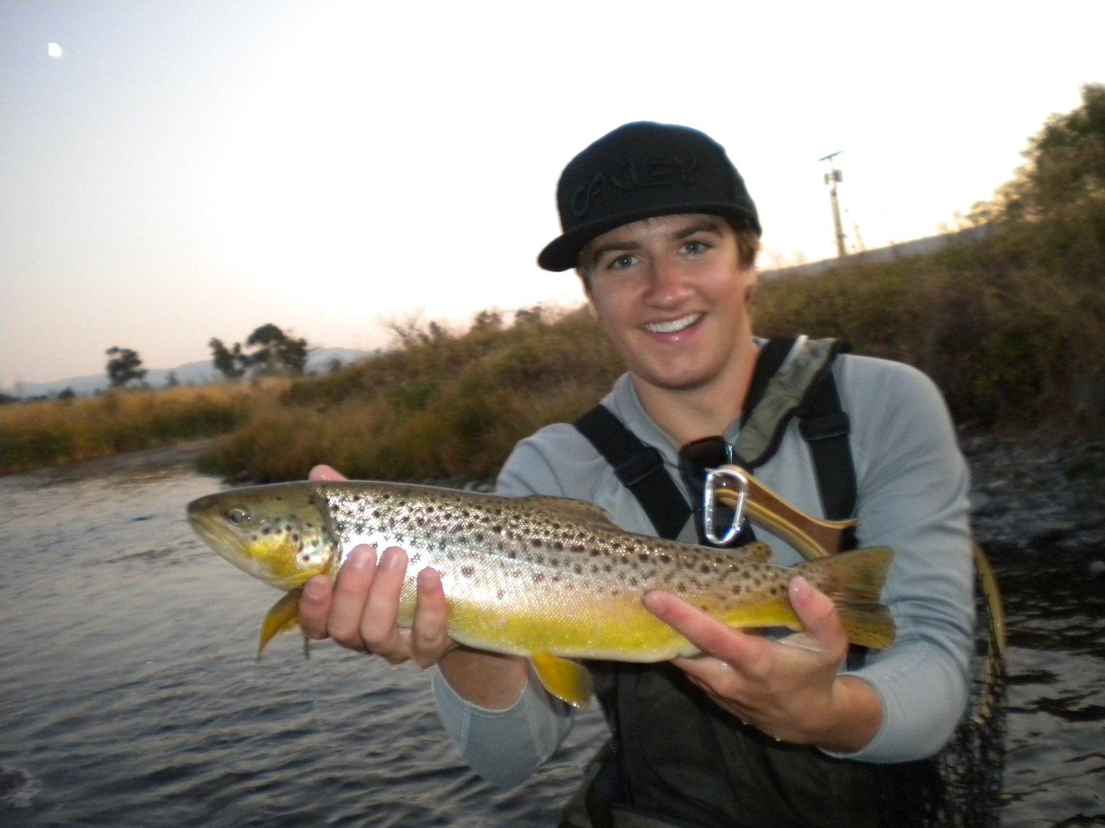 Maddison fish