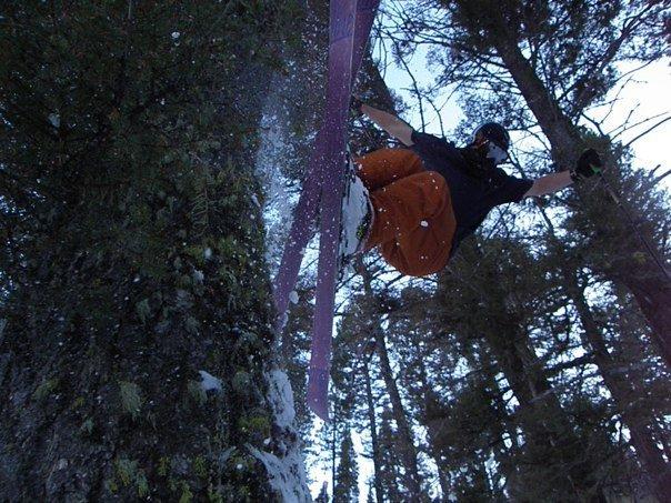 Early Season Tree Hit