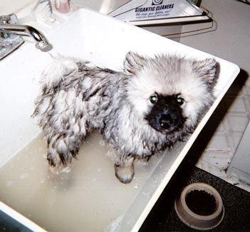 Nubbin bath