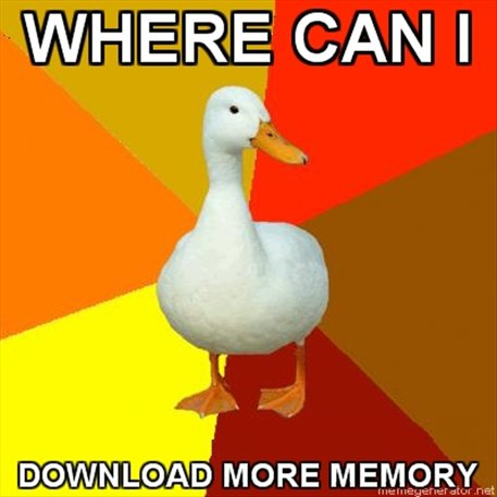 Memory duck