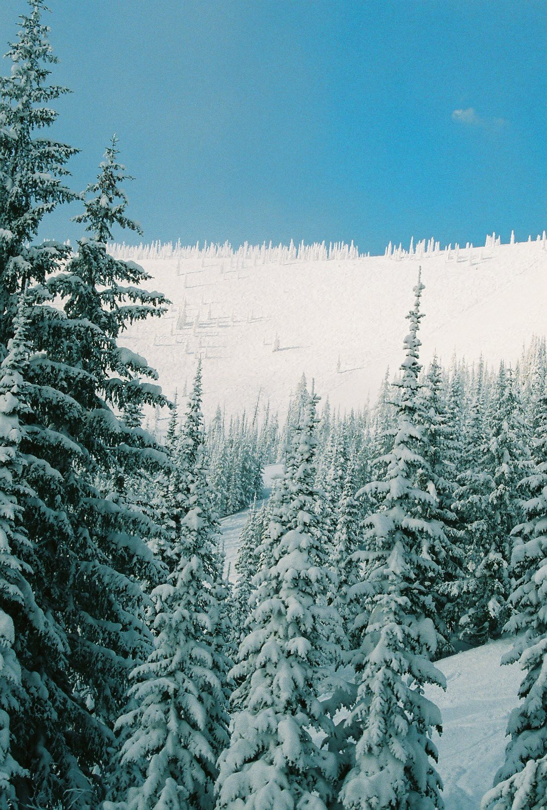 Winter at schweitzer