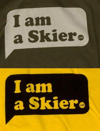 Skier - 2 of 2