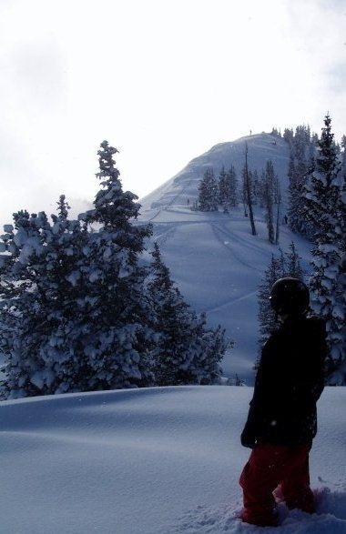 One Of Alta's Summits