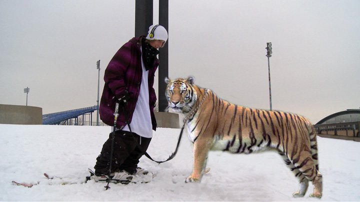 B-tiger