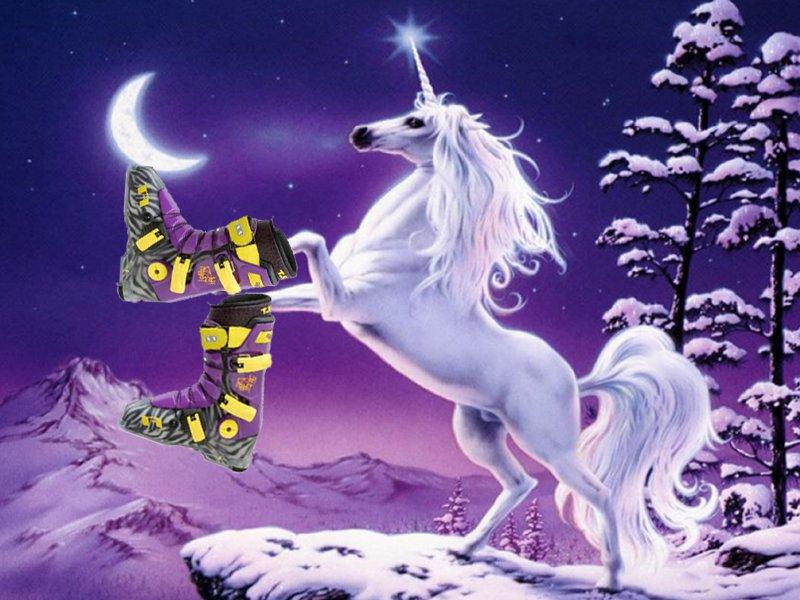 Full Tilts fit unicorns, so why not me? :-(