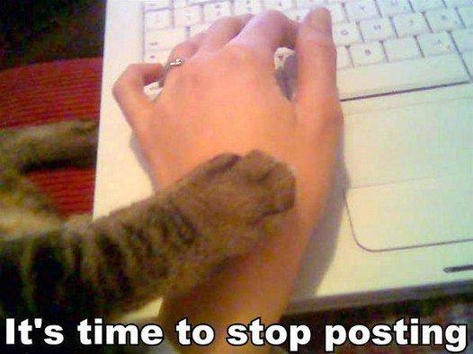 Stop posting kitty