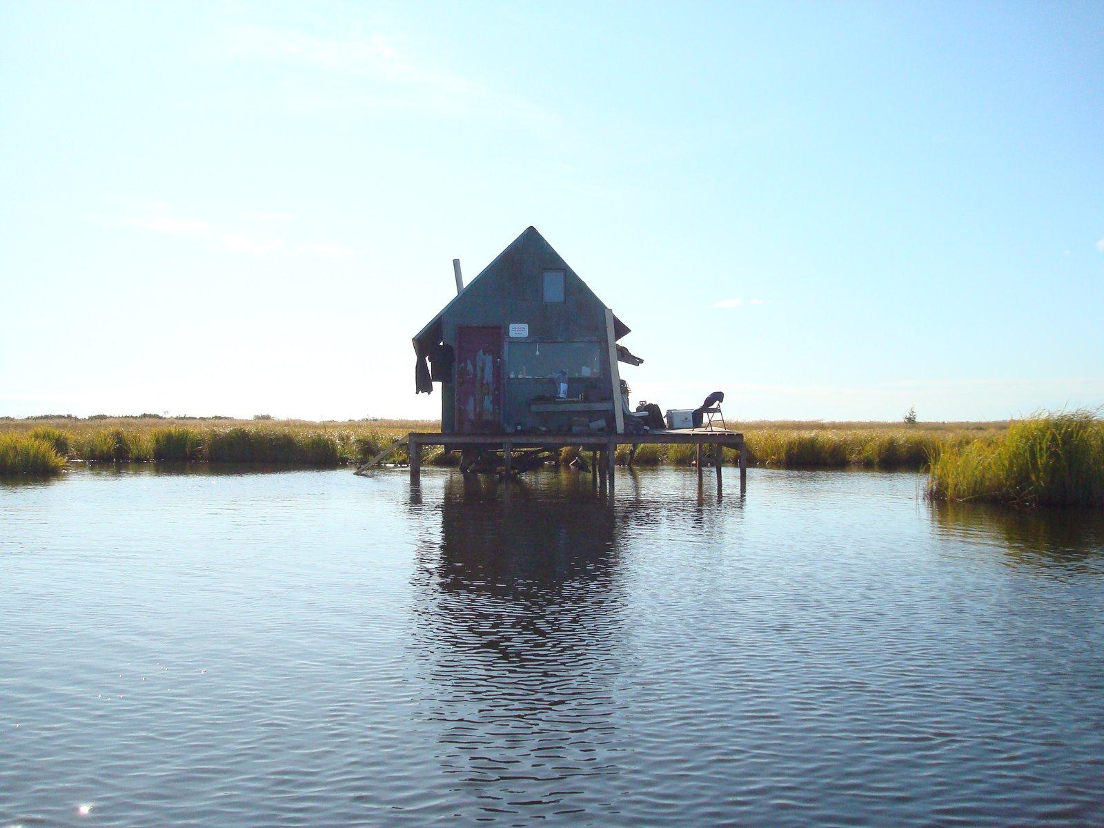 Duck shack