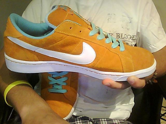 Nike sb classic