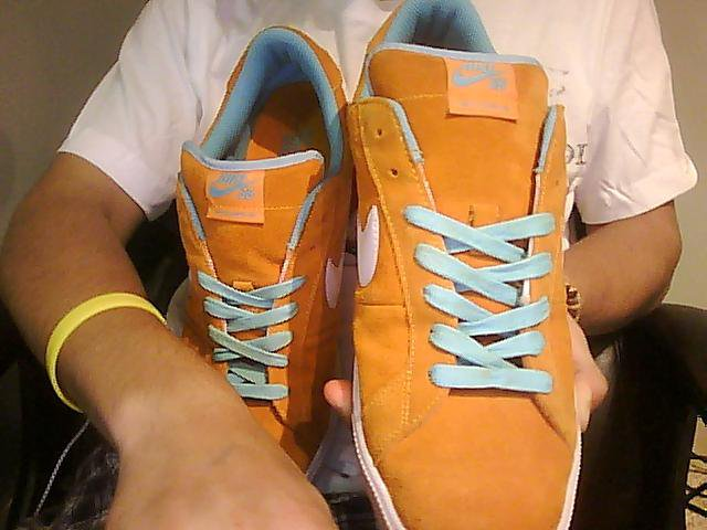 Nike sb classic 2