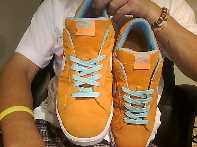 Nike sb classic 5