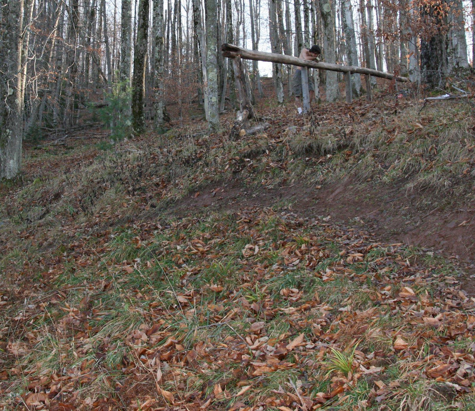 Log grind 2
